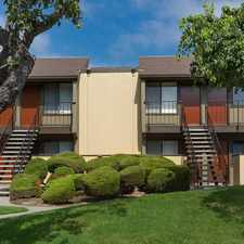 Rental info for Laurel Tree