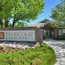 Rental info for Pinecone