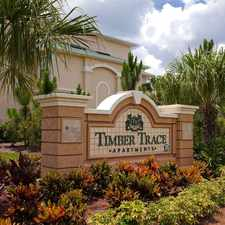 Rental info for Timber Trace