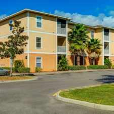 Rental info for Newer Construction 3 BR / 2 Bath Units with Beautiful Kitchen (Granite Countertops) in the Tampa area