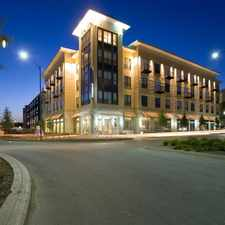 Rental info for Mosaic at Mueller in the RMMA area