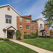 Rental info for Park Grove Apartments in the 60056 area