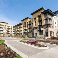 Rental info for Solana Cherry Creek