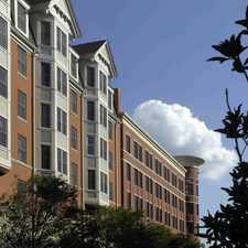 Rental info for The Fenestra at Rockville Town Square