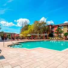 Rental info for Sabal Palm at Carrollwood