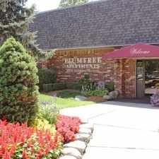 Rental info for Plumtree Apartments