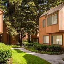 Rental info for Old Orchard in the Santa Clara area