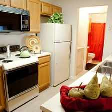 Rental info for 1000 San Jacinto Dr #1005 in the Irving area