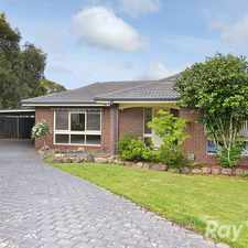 Rental info for 5 BEDROOMS, 3 LIVING AREAS, A BIG BLOCK & A COURT POSITION in the Wantirna area