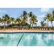 Rental info for 2655 Collins Avenue #606 in the Miami Beach area