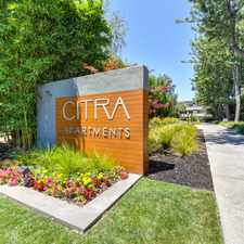 Rental info for Citra