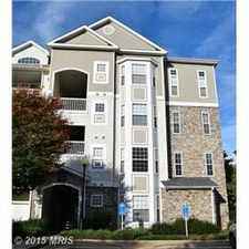 Rental info for 508 Sunset View Terrace Southeast #301