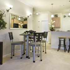 Rental info for 4339 Patriot Way #4339