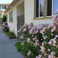 Rental info for 1970 Henderson Avenue #5 in the Long Beach area