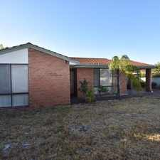 Rental info for Lifestyle living - Close to Canning River! in the Wilson area