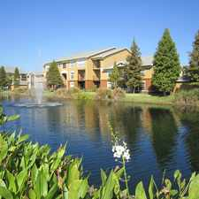Rental info for Plantation Gardens Apartments in the Pinellas Park area