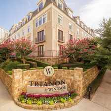 Rental info for Trianon by Windsor in the Dallas area