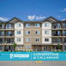 Rental info for Cornerstone at Callaghan