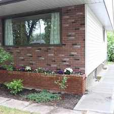 Rental info for Edmonton Basement Suite for rent in the Forest Heights area