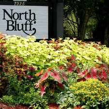 Rental info for North Bluff