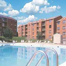 Rental info for Dale Forest Brightwood Forest