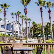 Rental info for Palms At Clear Lake