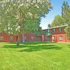 Rental info for Ground Floor 2 bedroom available January 19,2018~ Next to Terrace Park in the Arvada area