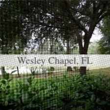 Rental info for House For Rent In WESLEY CHAPEL. in the Wesley Chapel area