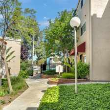 Rental info for Amador Heights