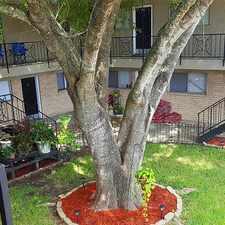 Rental info for Great Unit In Heart Of Angleton. $625/mo