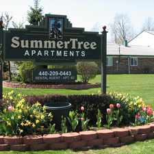 Rental info for Summertree Apartments in the Mentor area
