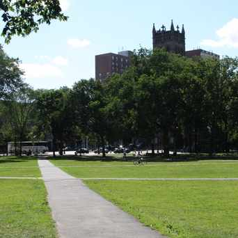 Photo of New Haven Green in New Haven