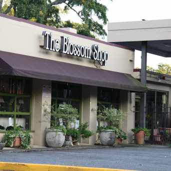 Photo of The Blossom Shop Florist in Eastover, Charlotte