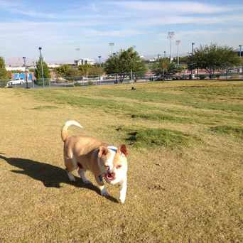 Photo of Dog Park in Las Vegas