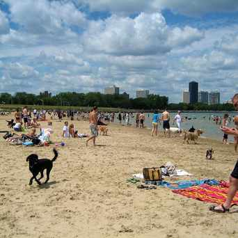 Photo of Montrose Beach in Uptown, Chicago
