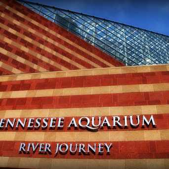 Photo of Tennessee Aquarium Conservation Institute in Chattanooga