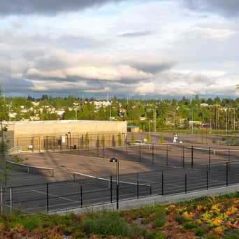 Photo of Public Tennis Courts, Westwood in Roxhill, Seattle