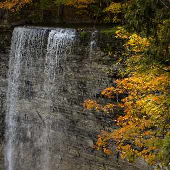 Photo of Tews Falls in Hamilton