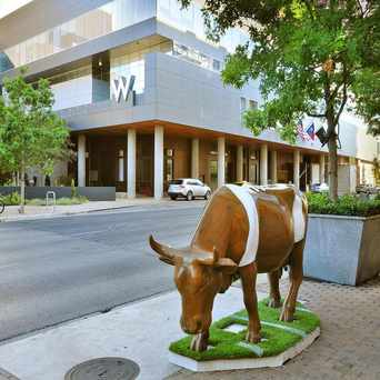 Photo of W Austin in Downtown, Austin