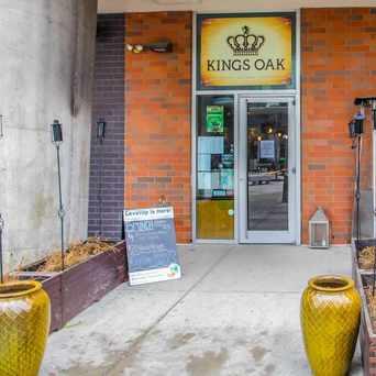 Photo of Kings Oak in Northern Liberties - Fishtown, Philadelphia