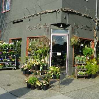 Photo of Figaro's Garden in Grandview-Woodland, Vancouver