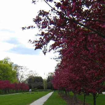Photo of Raymond Park in Evanston