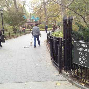 Photo of Madison Square Park in NoMad, New York