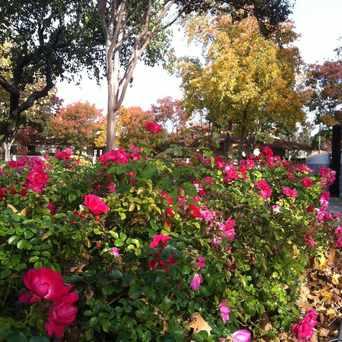 Photo of Portola Park in Livermore