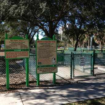 Photo of North Shore Dog Park in Historic Old Northeast, St. Petersburg