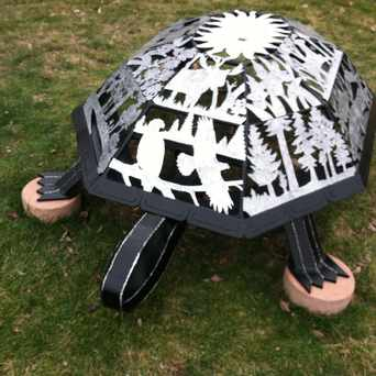 Photo of Turtle in Edina