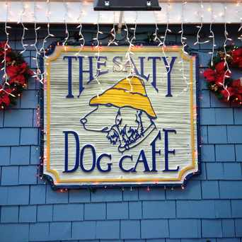 Photo of Salty Dog Cafe in Hilton Head Island