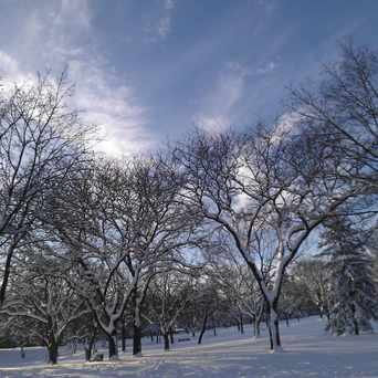 Photo of Morrison Park in Whittier, Minneapolis