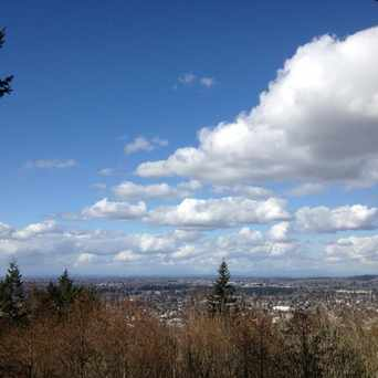 Photo of Sehome Hill in Bellingham