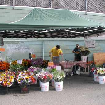 Photo of Inner Sunset Farmers' Market in Inner Sunset, San Francisco